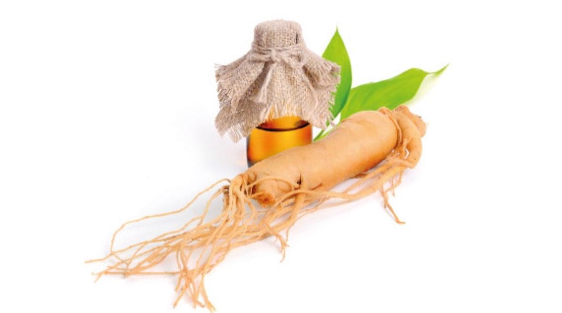 لماذا يعدّ الجنسنغ  «ذهباً» نباتياً؟