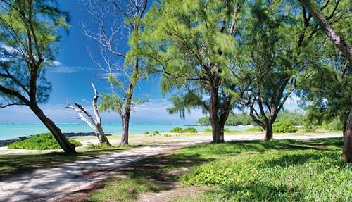«جزيرة موريشيوس»  أرض الابتسامات