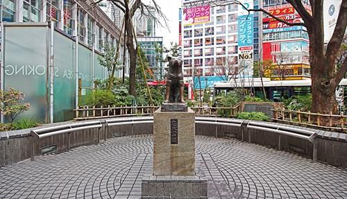 طوكيو مدينة لا تعرف السكينة