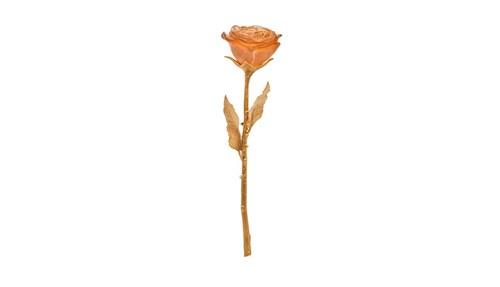 الوردة الأبدية من Daum لدى Tanagra