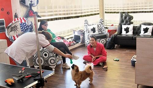 صالون للعناية بالحيوانات الأليفة في تونس