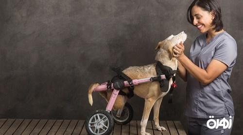 عفراء الظاهري: تصالحت مع قريبتي بسبب «كلب»