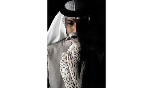 محمد الكمدة: ترويض الصقور يحتاج إلى «هدوء وحكمة»