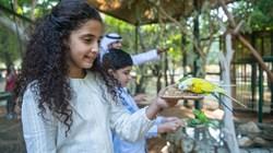 حديقة حيوانات العين تعيد تقديم مغامراتها للزوار