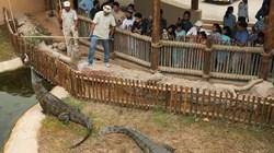 حديقة الحيوانات بالعين تقدم خصومات لعائلات الموظفين