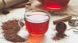 من فقدان الوزن إلى مكافحة الالتهابات.. فوائد شاي الرويبوس